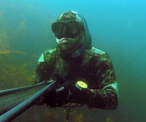 Fosnstraumen undervattensjakt